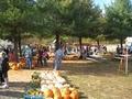 Pumpkin Patch Piedmont Oklahoma